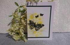 13-14-21_butterfly_gelb-schw