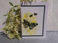 13-14-21_butterfly_gelb-schw_2
